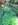 römerstraße, wagenspuren,  cart ruts, steingleise, spurrillen, steinerne geleise, karrenspuren, antike gleise, kniebis, kniebis-dorf, schwarzwald, zähringer, zähringerweg, schwabenweg
